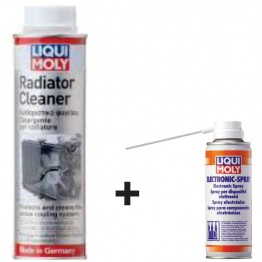 Air Flow Sensor Cleaner & Radiator Cleaner 300ML